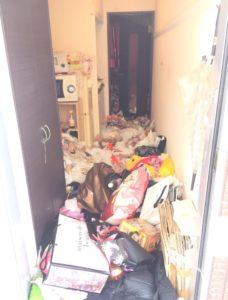 佐賀で20代の女性宅で引っ越しに関わるゴミ処分依頼!気楽に業者に依頼してねという話